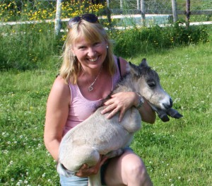 Linda Rognø, Hestegarden