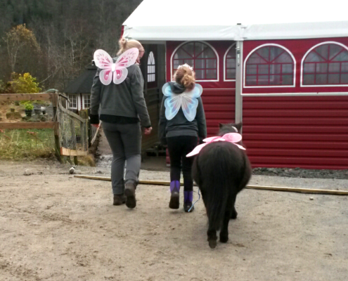 Gro Anita Kristensen, hestegarden
